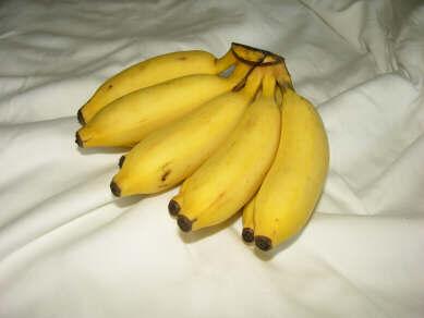 how to grow organic bananas